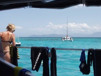 Backboard Side - Passion of Paradise, Barrier Reef, Queensland, OZ