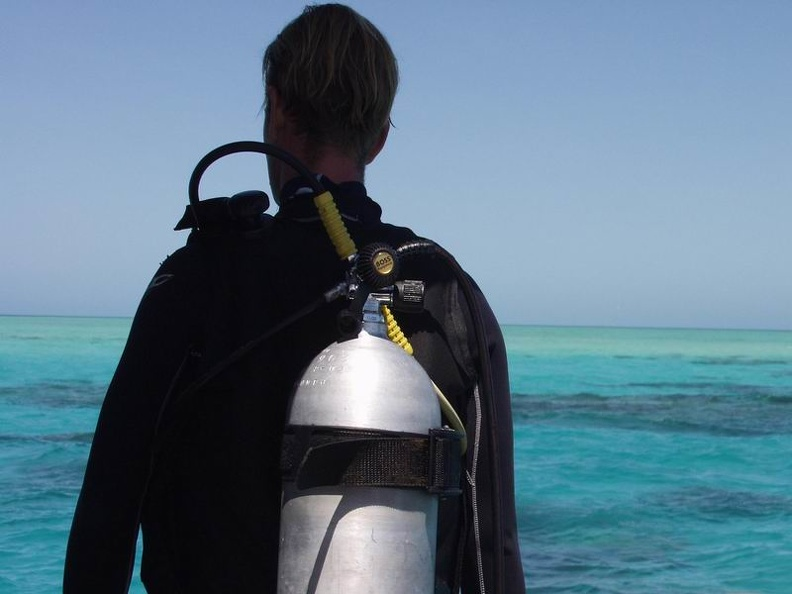 Diving_in_Paradise_Barrier_Reef_Cairns_Queensland_OZ.jpg