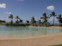 Lagoon Pool - Airlie Beach, East Coast Queensland, OZ