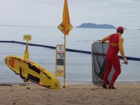 Lifeguard with Stinger Net  - Palm Cove, Queensland, OZ