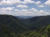 Rainforest Mountains - Lumholtz National Park, Ingham, Queensland, OZ