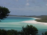 The world's whitest sand - Whitehaven Beach, Whitsunday Island, Queensland, OZ