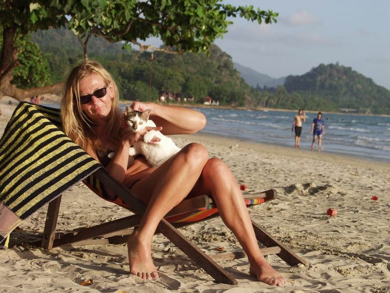 Cat_and_dogs_White_Sand_Beach_Koh_Chang_Thailand_White_Sand_Beach_Koh_Chang_Thailand.jpg