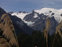 Franz Josef Glacier - Westland Glacier Country, South NZ