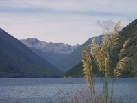 Lake Rotoiti, Nelson District, South NZ