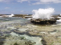 Blow Holes - Keleti Beach, Tongatapu