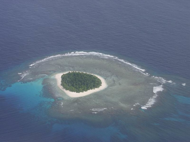 S_dsee_pur_Ha_apai_Islands.jpg