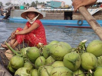 Coconut shop - Can Tho, Mekong Delta, South Vietnam