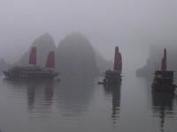 Peaceful cruising Dragon Boats - Halong Bay, Gulf of Tonkin, Northeast Vietnam