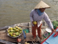 Selling Mangos - Boat Woman at Mekong Delta, Cai Rang floating market, Can Tho, South Vietnam