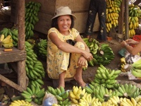 Selling bananas - Central market, Hoi An, Central Vietnam