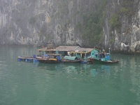 Small fishing village - Halong Bay, Gulf of Tonkin, Northeast Vietnam