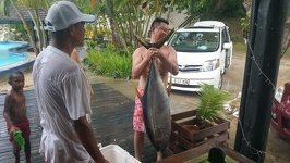 Big catch - Anchorage Beach Resort Fiji Island Viti Levu