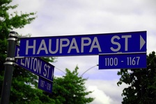 Street Sign - Rotorua, Central Northland, NZ