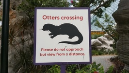 Otters crossing - Gardens by the bay Singapore