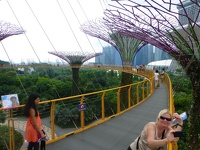 Sky walk - Supertree Groove Gardens by the bay Singapore
