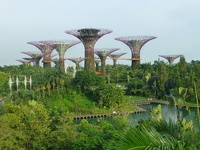 Supertree Groove - Gardens by the bay Singapore