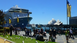 At the wharf - Sydney New South Wales Australia