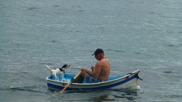 Man and dog in boat - Manly Beach Sydney New South Wales Australia