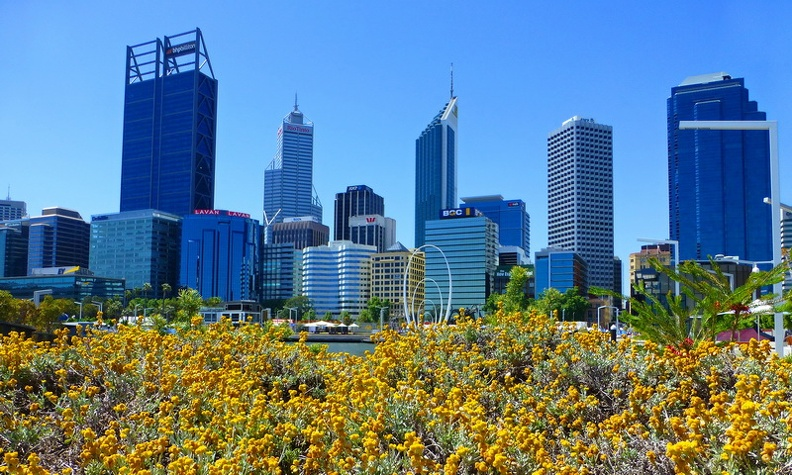 Flowers_and_City_-_Perth_Western_Australia.JPG