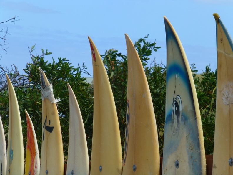 Surfboard_fence_-_Road_to_Prevelly_beach_Margaret_River_Western_Australia.JPG